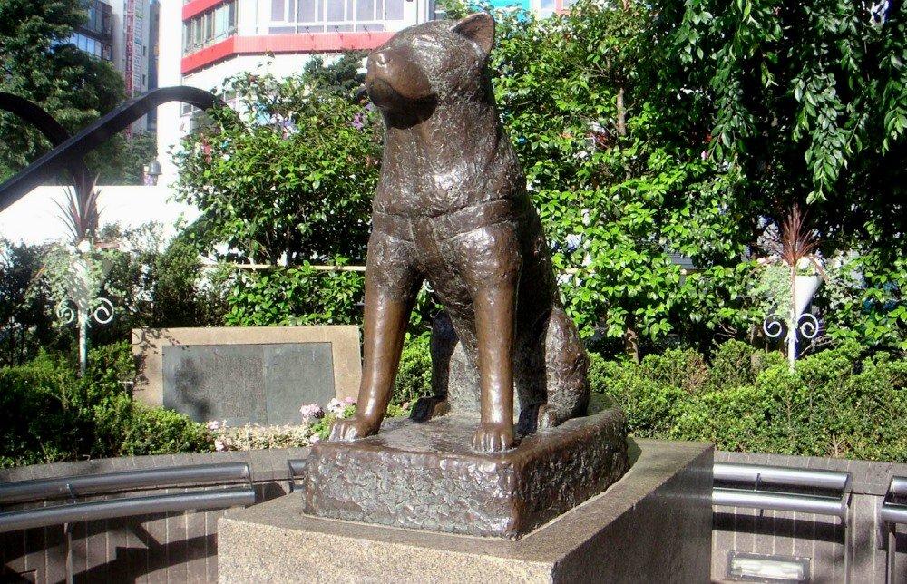 памятник Хатико возле метро