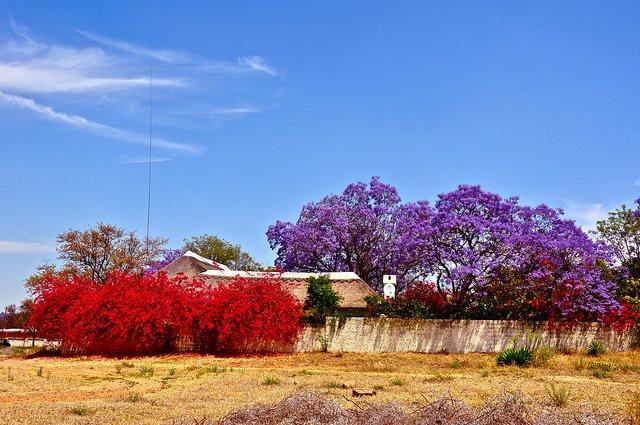 фотография природного парка Ботсваны