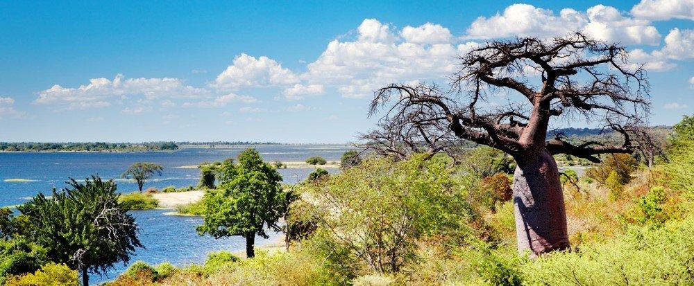 фото природы, окружающей Габороне