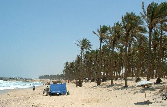 Palms Beach в Эль-Арише