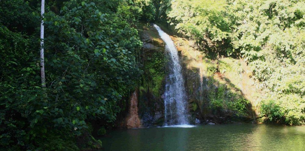 природа: водопад в парке